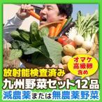 [送料込み]九州 野菜セット12品(オマケ野菜 高級卵含む)  放射能検査済み