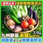 ショッピングお試しセット [送料込み]九州 野菜 お試しセット 7〜9品  放射能検査済み 野菜セット