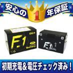 セール特価レビューで送料¥390 F1 バッテリー FTZ10S YTZ10S互換 安心の1年保証付き 液入れ充電済み F1 バイク用 バッテリー