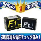 レビューで送料¥390 1年保証付き F1 バッテリー ZZ ジーツー /BB-CA1PB用 バッテリー YT4B-BS GT4B-5 互換 MFバッテリー FT4B-5