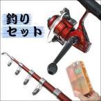 釣竿 セット 初心者 種類 リール 豪華21点  釣り 竿 糸  仕掛  釣り道具  キャリングケース付き  釣り竿セット 安い