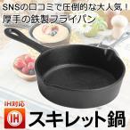 スキレット鍋 魔法の鋳鉄フライパン 料理が格別に美味しくなる IH対応 深型 厚手の鉄製 アウトドア 高い蓄熱性 片手 TVやSNSで話題 人気 15cm おしゃれ 安