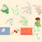鳩居堂 秋のハガキ 11枚セット kyu-38 萩・芙蓉・赤とんぼ・たで・けいとう・くず・ざくろ・紫式部 シルクスクリーン印刷 きゅうきょどう ポストカード は