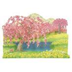 春カード(多目的) と菜の花の風景 P4321 立体カード さくらカード サンリオ