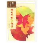 サンリオ 秋カード 立体 もみじ1本と猫 P4718 レーザーカット グリーティングカード 多目的 多用途 もみじ 紅葉 ねこ ネコ sanrio