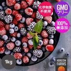 有機 JAS 認証 オーガニック 冷凍 ミックスベリー 1kg チリ産 砂糖不使用