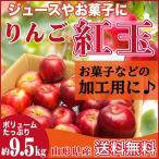 紅玉 加工用 9.5キロ りんご 山形県産 お菓子用 小玉 林檎 リンゴ 9.5kg 送料無料【日付指定不可】
