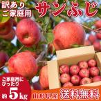 りんご 訳あり 5キロ サンふじ 山形県産 ご家庭用 産地直送 林檎 リンゴ 5kg【12月中旬から下旬発送】