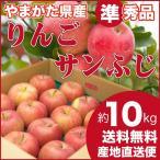 りんご サンふじ 準秀品 約10キロ 山形県産 産地直送 林檎 リンゴ 10kg 送料無料