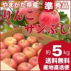 りんご サンふじ 準秀品 約5キロ 山形県産 産地直送 林檎 リンゴ 5kg 送料無料 お試し