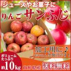 りんご 加工用 10キロ サンふじ 山形県産 ジュース用 訳あり 産地直送 林檎 リンゴ 10kg