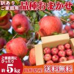 りんご 訳あり 品種おまかせ 5キロ 山形県産 ご家庭用 産地直送  林檎 リンゴ 5kg