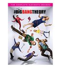big bang theory season 11の画像