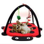 ペット 猫 ハンモック ベッド おもちゃ子猫 テント アクセサリー パッド
