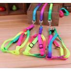 Yahoo!ホットスタイルカラフル 虹色 ペット 犬 猫 ウサギ ウォーキング ハーネス リード ペット製品 【定形外送料無料】