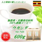 コーヒー 無農薬栽培 コーヒー ウガンダ  600g  送料無料