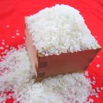 平成29年産 長野県飯山産 コシヒカリ 白米 10キロ 条件付送料無料
