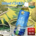 長崎松浦のお知家 500ml×24本 緑茶(清涼飲料水)