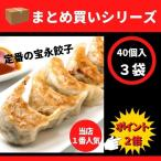 【まとめ買いシリーズ】宝永餃子(スタンダード)40個入 3袋 ぎょうざの宝永