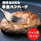 【肉汁ジュワ〜!】ジャンボ 牛生ハンバーグ190g×4枚 ぎょうざの宝永