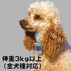 犬のしつけに ジェットケア ミニ 体重3kg以上に最適