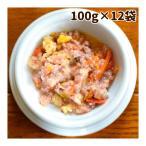 愛犬の安心レトルトごはん 低カロリー馬肉とかぼちゃのミルクがゆ100g12袋セット 犬用 無添加 国産 低脂肪 低カロリー