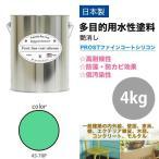 屋外 多目的用 水性塗料 45-70P ミントグリーン  4kg/艶消し 内装 外装 壁 屋内  ファインコートシリコン つや消し 多用途
