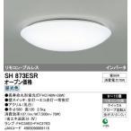 ※在庫限り※【送料無料】ODELIC(オーデリック) 照明器具 シーリングライト リモコン付 8〜10畳 昼白色 SH873ESR