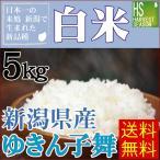 米 5kg 新潟県産 ゆきん子舞 精白米 白米 28年産 送料無料