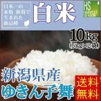 米 10kg 5kg×2袋 新潟県産 ゆきん子舞 精白米 白米 28年産 送料無料 ポイント3倍