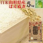 新米 5kg はえぬき 山形県産 白米 精白米 令和元年産 送料無料