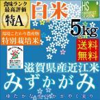 5kg みずかがみ 滋賀県産 特別栽培米 精白米 白米 29年産 送料無料 特A