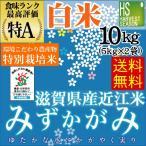 5kg×2袋 みずかがみ 滋賀県産 特別栽培米 精白米 白米 10kg 29年産 送料無料 特A