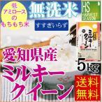 無洗米 5kg ミルキークイーン 愛知県産 28年産 送料無料