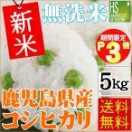 新米 5kg 無洗米 鹿児島県産 コシヒカリ ポイント3倍 30年産 送料無料