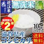 無洗米 10kg 滋賀県産 コシヒカリ (5kg×2袋) 28年産 送料無料