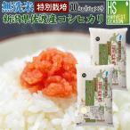 無洗米 5kg×2袋 新潟県 佐渡 コシヒカリ 特別栽培米 10kg 28年産 送料無料 特A
