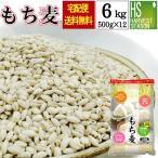 もち麦 (大麦) 6kg (500g×12袋) 特価セール お得なケース まとめ買い 送料無料