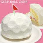 ゴルフボール スポンジケーキ 5号  ホワイトデー 誕生日 記念日 ギフト 父の日 プレゼント ゴルフ