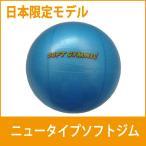 ギムニク ソフトジム ニュータイプ 日本限定版 バランスボール ミニ ブルー メール便対応