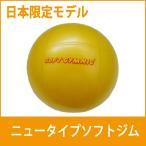 ギムニク ソフトジム ニュータイプ 日本限定版 バランスボール ミニ イエロー メール便対応