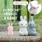 3Dポチフレンズ ラビット 3D POCHI FRIENDS RABBIT シリコンがまぐち小物入れ p+gdesign