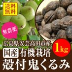 送料無料 国産 有機栽培 限定数 上質の殻付き生 鬼胡桃 1kg