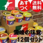 愛媛の味覚のジェラートアイス 12種類詰め合わせ