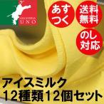 アイスミルク12種類の詰め合わせ アイスクリーム12個セット お取り寄せ