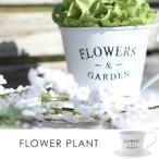 プランター ブリキプランター 鉢カバー プランターカバー 植木鉢 コーヒーカップ型