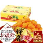 お歳暮 メーカー直送 和歌山県産 AQみかん (約5kg) 御歳暮 ギフト フルーツ セット 詰合せ 果物 国産