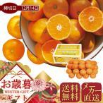 お歳暮 メーカー直送 和歌山県産 有田みかん (約5kg) 果物 フルーツ ギフト 贈り物 プレゼント 御歳暮