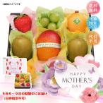 母の日 メーカー直送 母の日 果実のキモチ フルーツ宝石箱 M-H-FHR 詰め合わせ セット 果物 ギフト プレゼント お取り寄せ