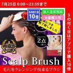 SCALP BRUSH WORLD MODEL スカルプブラシ ワールドモデル ロング スカルプ 発毛促進ブラシ 小顔 毛穴 スカルプケア エスハートエス